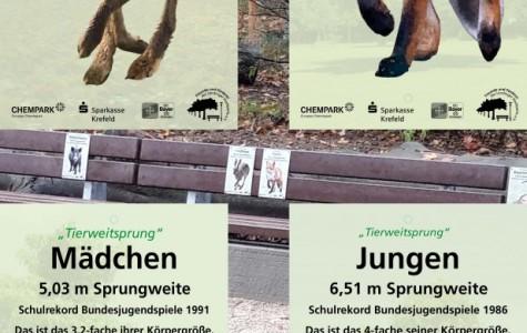 Tierweitspung-Schilder-150x300-final-1