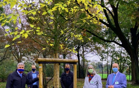 Stadtpark-Uerdingen-Foto-II1